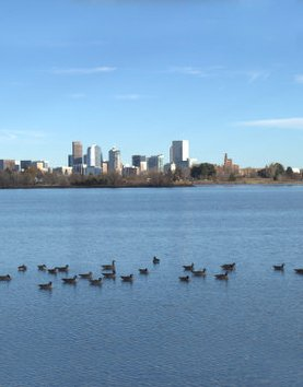 Services - Denver Residential Appraisals